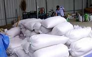 种粮户被坑十多万 上万斤稻种全系假货