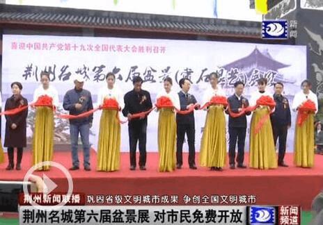 荆州名城第六届盆景展开幕 对市民免费开放