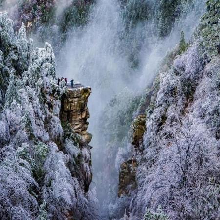 江西庐山现雾凇景观 梦幻如仙境
