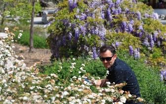 美国洛杉矶:春色满园藏不住