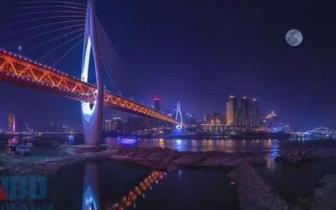 重庆自贸区新增企业万余家