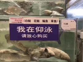 央视曝光!杭州人千万别买这种鱼!严重可致....
