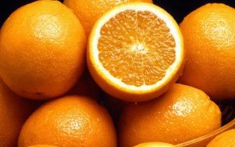柑橘类水果适合放床头 散发香味能助眠