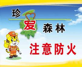 """义马市森林防火:密织护林防火""""安全网"""""""