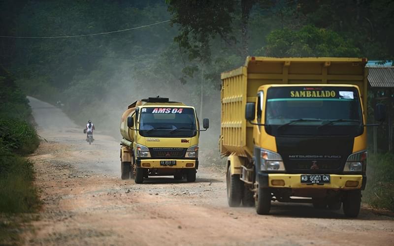 在印度尼西亚每年生产的七百万吨纸浆中,86%来自苏门答腊岛。