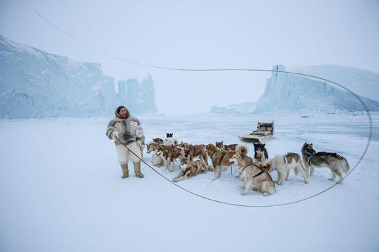 太阳像打火机 北极融化 动物将被挤到小角落?