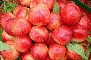 万荣:200吨油桃将出口马来西亚