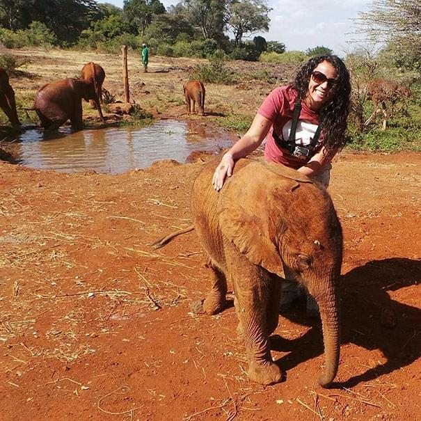 一群大象中,小象偏偏看上一只鸵鸟,成为好闺蜜