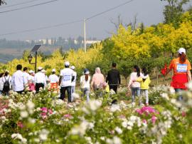 到2020年 山西休闲农业和乡村旅游收入将翻番