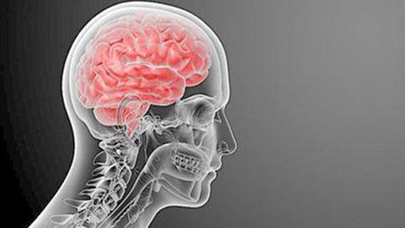 儿童突发行为异常?或许是脑膜炎在作祟!