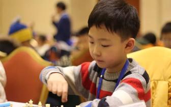 棋局妙趣横生 少年智慧博弈