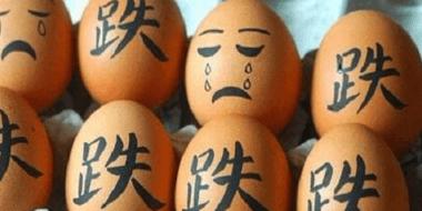 """鸡蛋价格""""潮起潮落"""" 乐了消费者 苦了养殖户"""