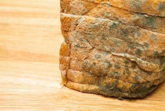 台好心人送发霉面包给育幼院 呛声:有东西吃还挑