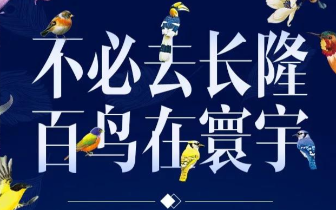 """""""不必去长隆,百鸟在寰宇""""世界珍奇百鸟展震撼来袭!"""