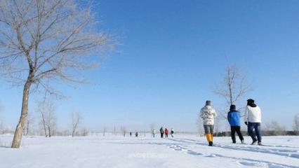 冰雪旅游:正在我国体育旅游中异军突起
