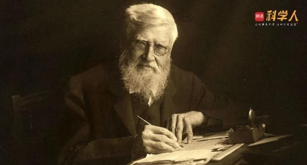 关于进化论 该记住的不止有达尔文 还有华莱士