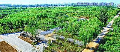 森林公园进北京 市民身边多了500多处森林游憩点
