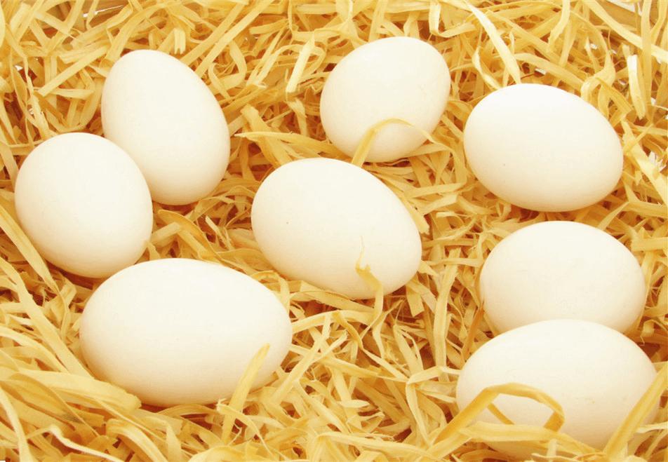 小小鸡蛋的七款做法 总有一款是你的最爱