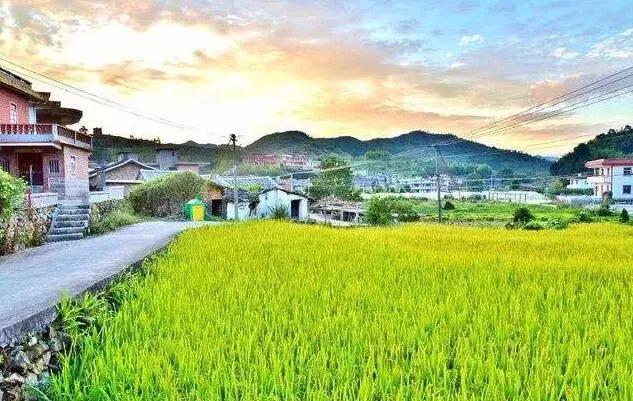 荆州27个村入选美丽乡村建设试点村 有你家乡没?