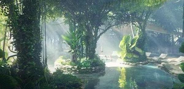 又任性!迪拜建世界首家热带雨林酒店