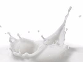 先购买牛奶才允许报名入学?教育局这样回应
