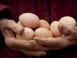 鸡蛋这样吃才是正确的打开方式!