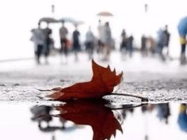 一波冷空气来势汹汹 12月6日福州市区最低温9℃