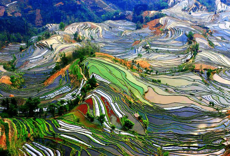 老外评出最向往的20处中国美景 你去过几处?