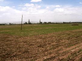 运城市农委举办高标准 农田建设与管理培训班