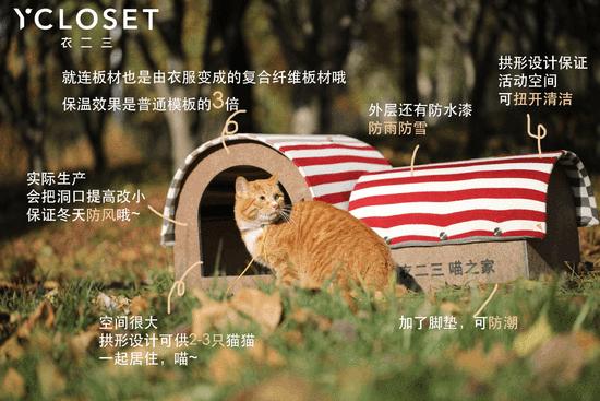 陈乔恩舒淇助力公益 用闲置衣物改造猫窝