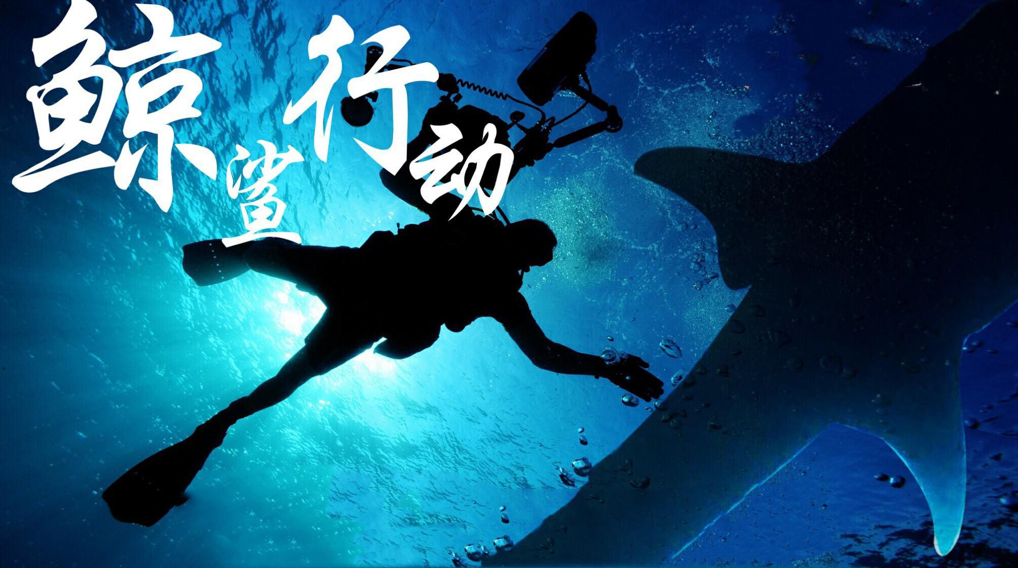 《鲸鲨行动》将开机 崭新运作模式解决行业痛点