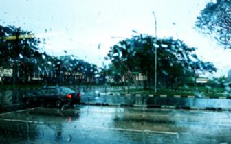福州14日雨势再度增强 局部有暴雨外出要带雨具