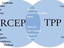 商务部:RCEP谈判已进入实质性磋商阶段