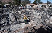 美加州野火肆虐 遍地灰烬