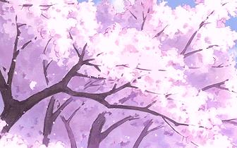 呼和浩特长达7个月的赏花季即将正式开启