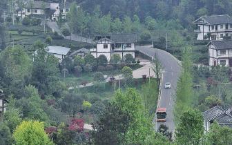 乡村振兴规划先行 规划软肋堵住汽车进村入户路