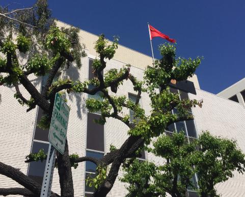 中国驻洛杉矶总领馆停车时间延长2小时