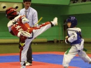 宜昌市第七届武术运动会跆拳道交流赛成功举办