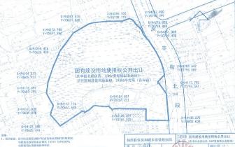 """庆丰街北段片区改建""""三万五""""地块成功拍卖出让"""