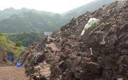 重庆发现世界级恐龙化石群