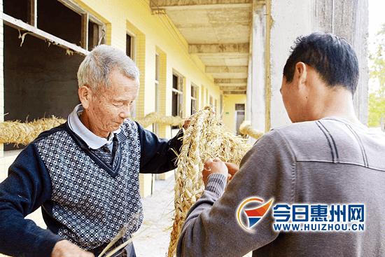 惠东铁涌河潭村舞草龙申报市非遗 有200多年历史