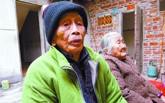 番薯芋头吃了近百年,三水一对长寿夫妇的百年养生经