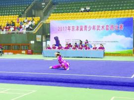 京津冀青少年武术套路比赛在石家庄举行