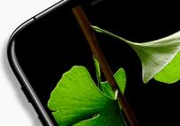 如果新iPhone真的很贵很贵,你还会买买买吗