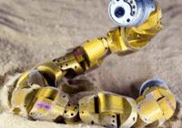 美科学家打造蛇形机器人:灵活到能缠住你的腿
