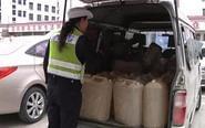 面包车装载10桶汽油被暂扣 危险又违法