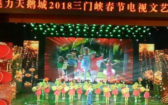 """""""魅力天鹅城""""三门峡春节电视文艺晚会举行"""