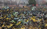 闲置工地堆积万辆共享单车