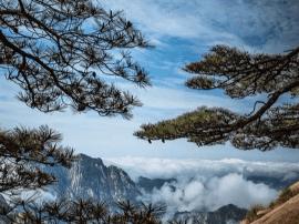 中国40个最美景点之黄山 一生必去一次的地方