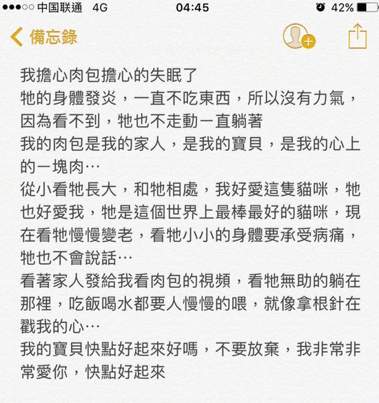 陈乔恩因爱猫生病而失眠 凌晨发文惹粉丝心疼